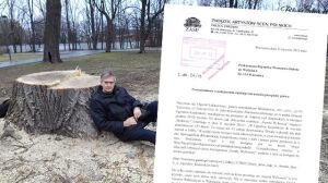 Wycinka w Ogrodzie Krasińskich trafiła do prokuratury