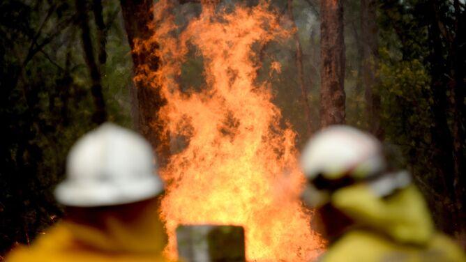 """Wschodnia Australia płonie. """"Dopóki nie spadnie dużo deszczu, pożary nie ustaną"""""""