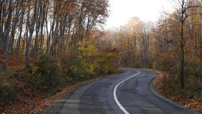Warunki na drogach będą korzystne dla kierowców