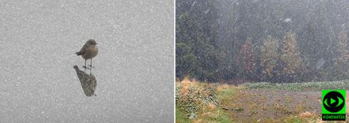 Przymrozki w nocy, śnieg z deszczem za dnia. Część z was poczuła zimę