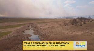 Płoną tereny Biebrzańskiego Parku Narodowego